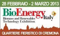 bioenergy-2013