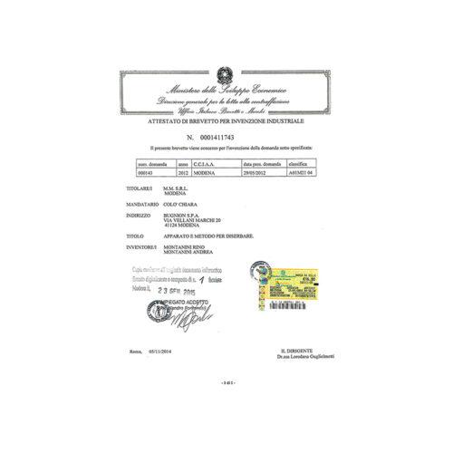 certificato di brevetto_mini